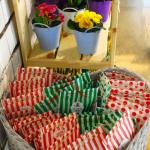 Pungute bulbi de flori: ranunculus, oxalis
